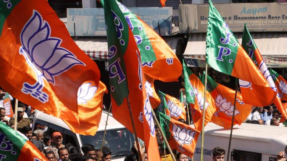 BJP will launch 'Vijay Sankalp Sabha' poll campaign on Sunday for Lok Sabha election
