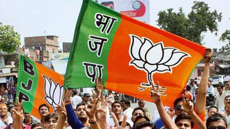 Gujarat: BJP names candidates for 4 Lok Sabha seats and Talala Assembly bypoll