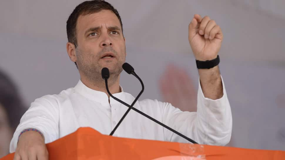 If voted to power, Congress will give special status to Andhra Pradesh: Rahul Gandhi