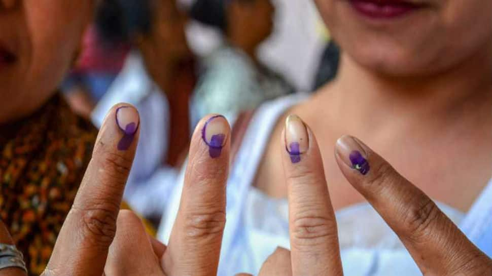 Lok Sabha election, fifth phase: 184 crorepatis, 384 graduate candidates in the fray