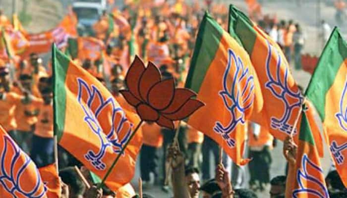 BJP MP Hukumdev Narayan confident of son's victory from Madhubani in Bihar