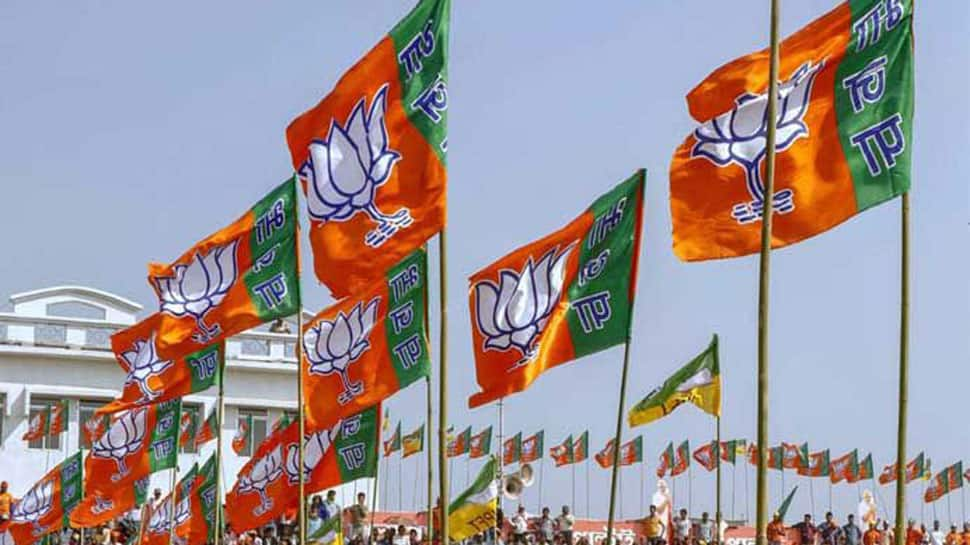 BJP retains Mapusa Assembly by-poll in Goa