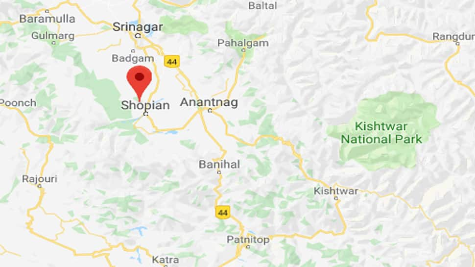 One terrorist killed in encounter with security forces in Jammu and Kashmir's Shopian