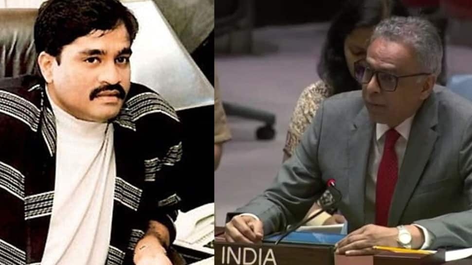 India slams Dawood and D-Company at UNSC, links terrorism to organised crime