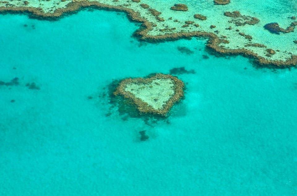 Great Barrier Reef facing unprecedented challenges
