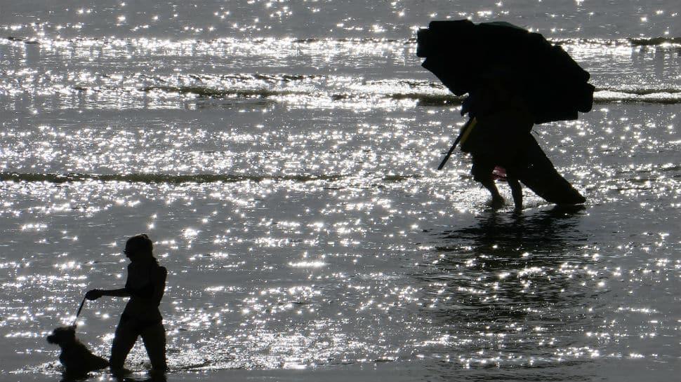 Intense heatwave grips Europe, Paris sizzles at almost 41 degree Celsius