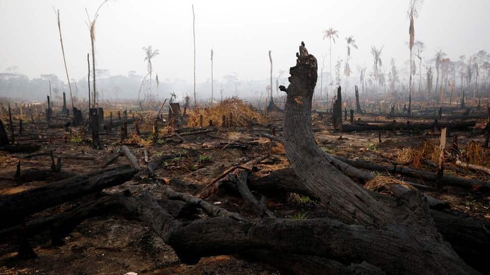 Brazil president Jair Bolsonaro sends army to control Amazon fires
