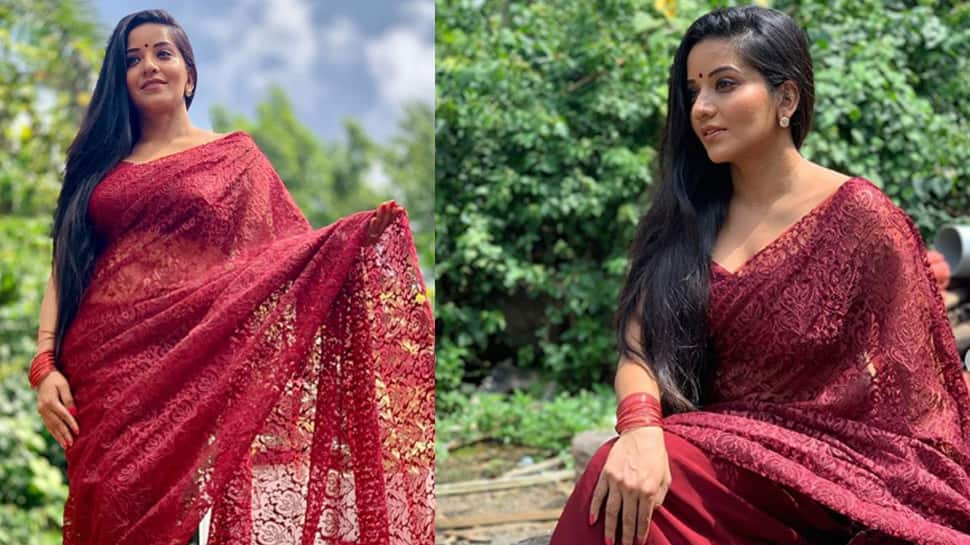Monalisa flaunts her flawless beauty in a maroon net saree—Photos