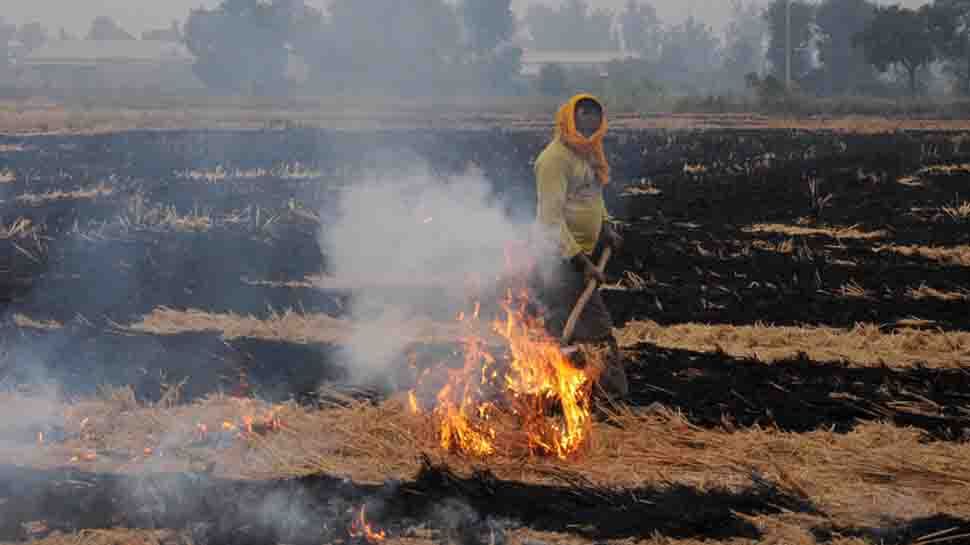 Farmers in Punjab's Amritsar continue to burn stubble despite ban