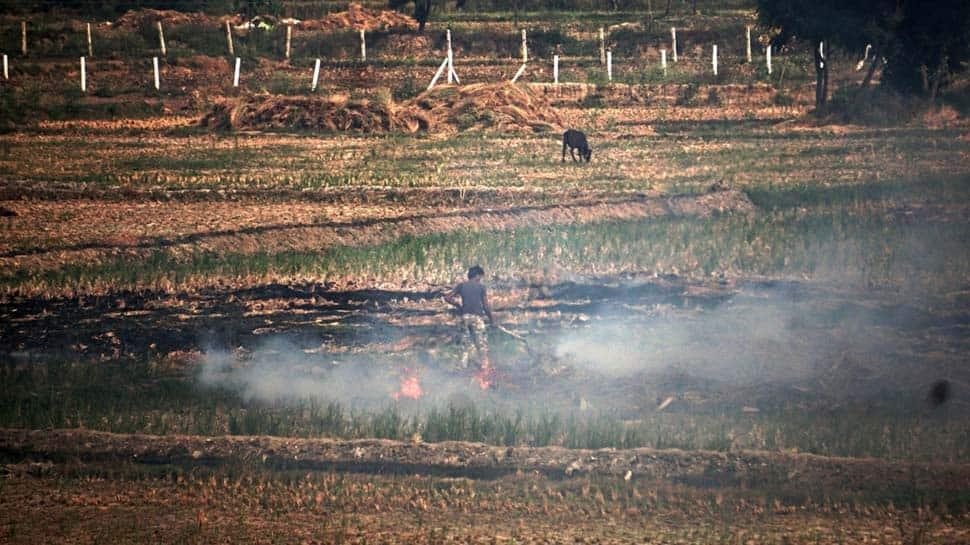 PM Narendra Modi directs distribution of equipment to Punjab, Haryana and Uttar Pradesh farmers to curb stubble burning