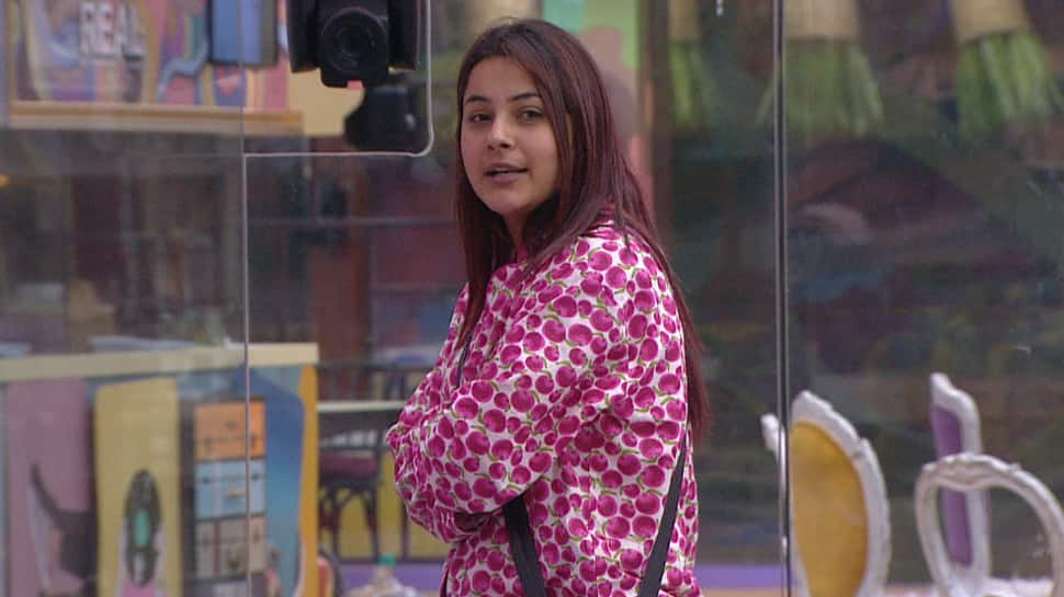 Bigg Boss 13 Day 82 written updates: Captain Shehnaz gets troubled by the housemates