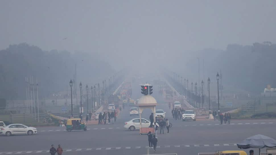 Cold wave grips north India, Delhi witnesses coldest day of December on Monday in last 119 years