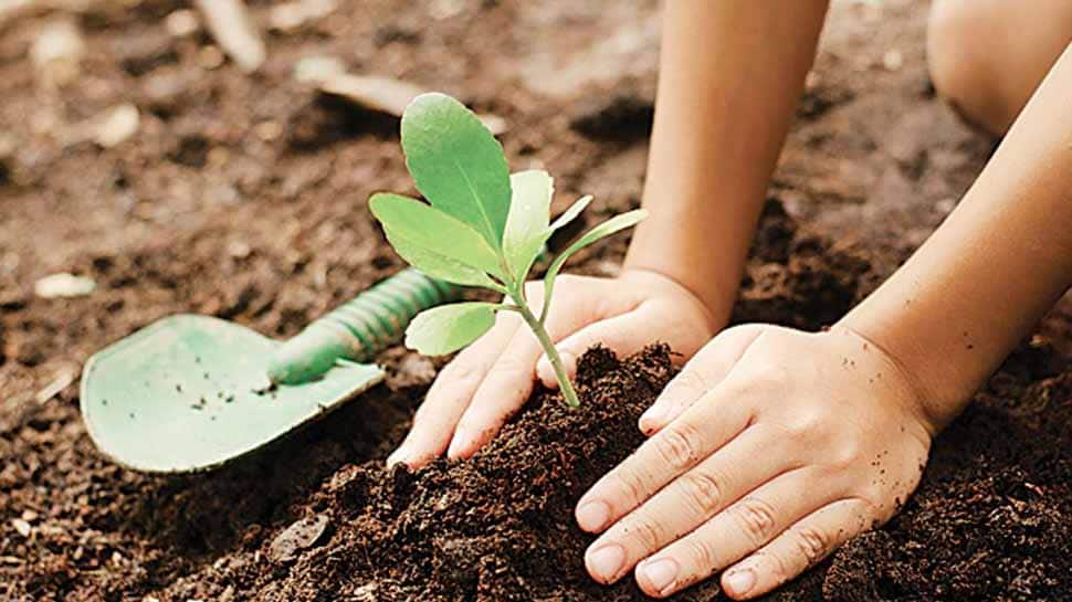 Bihar govt launches 'Pyaar ka Paudha' campaign to encourage practice of planting trees
