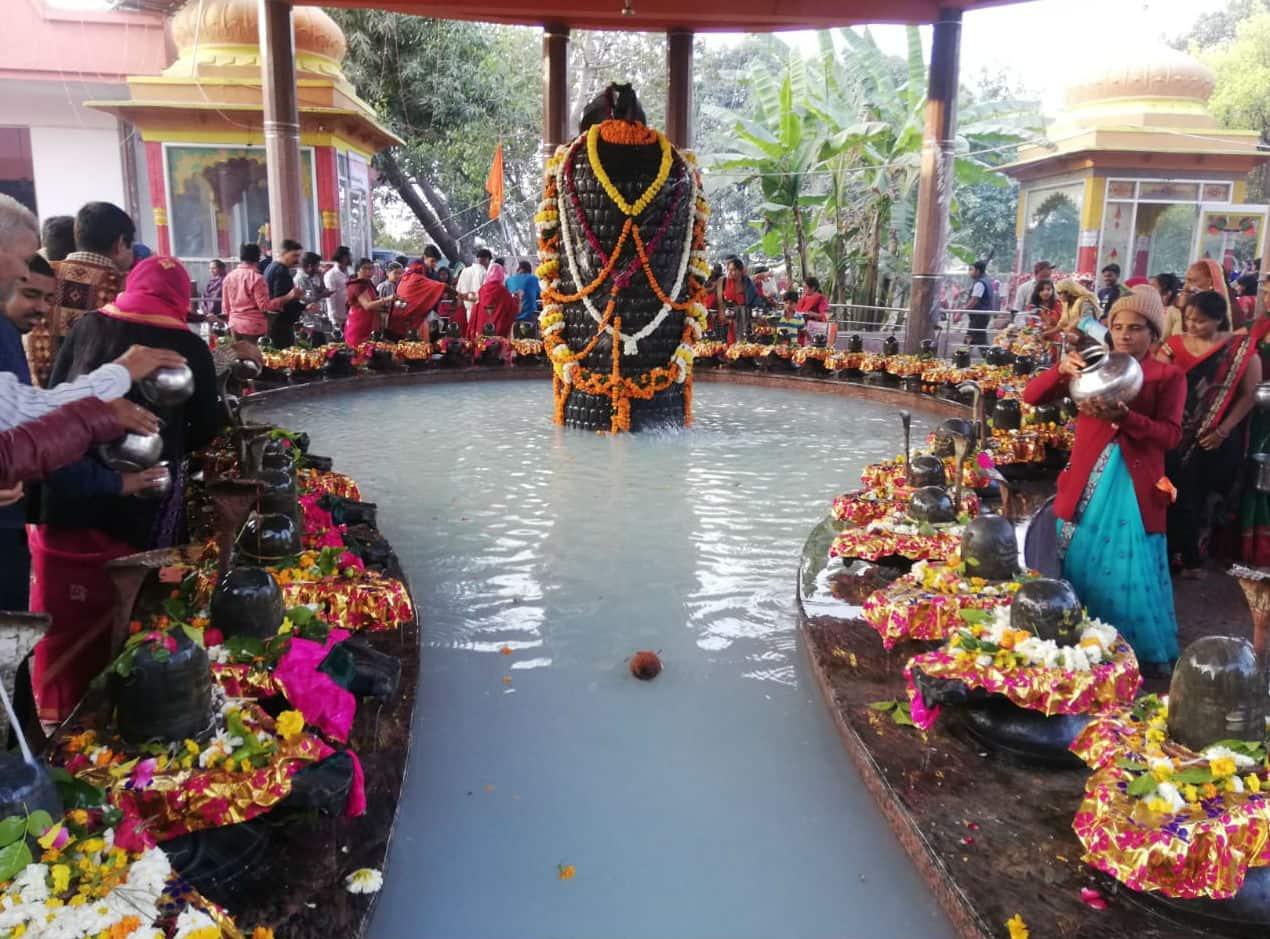 Maha Shivaratri Celebrations Grip India in Festive Fervor