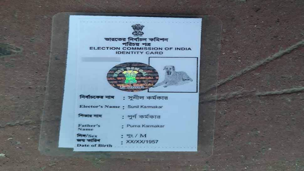 Murshidabad man issued voter ID card with dog's picture