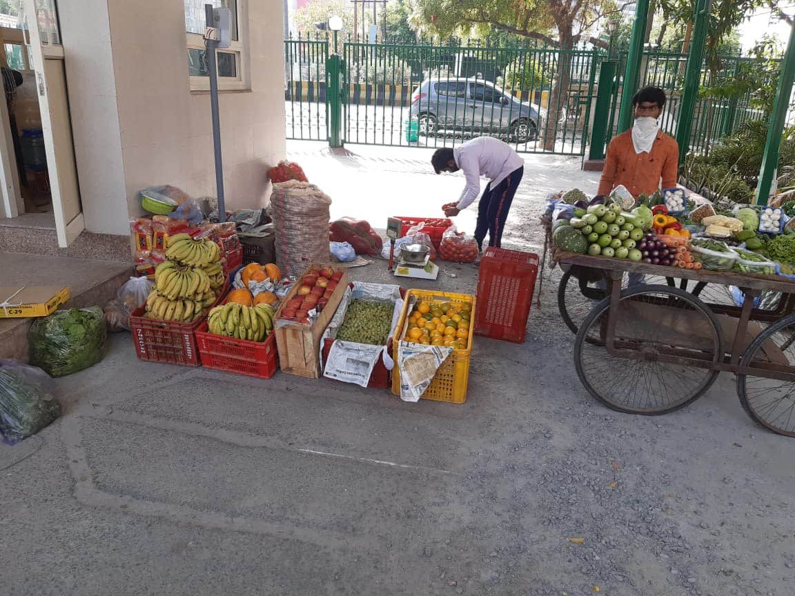Doorstep vegetables and food delivery