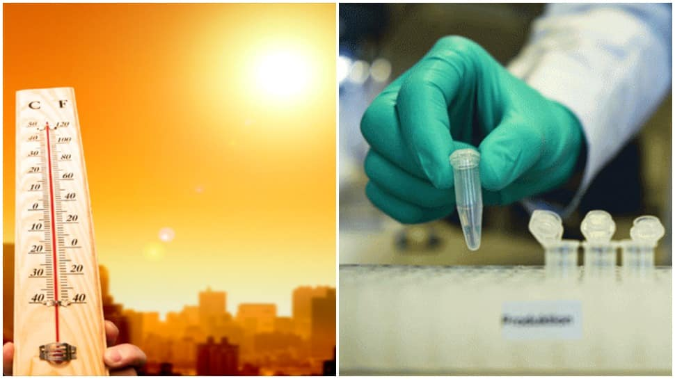 Lower COVID-19 cases in hotter regions, reveals IIT-Madras study