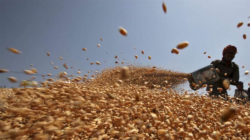 India's wheat procurement surpasses last year's level of 34.1 mn tonnes despite COVID hurdles