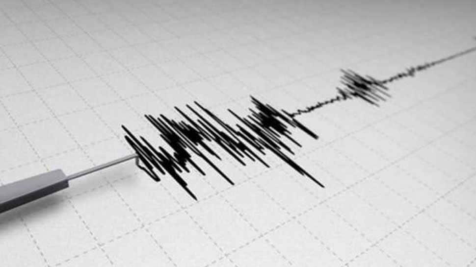 Quake measuring 4.5 magnitude jolts Ladakh's Kargil