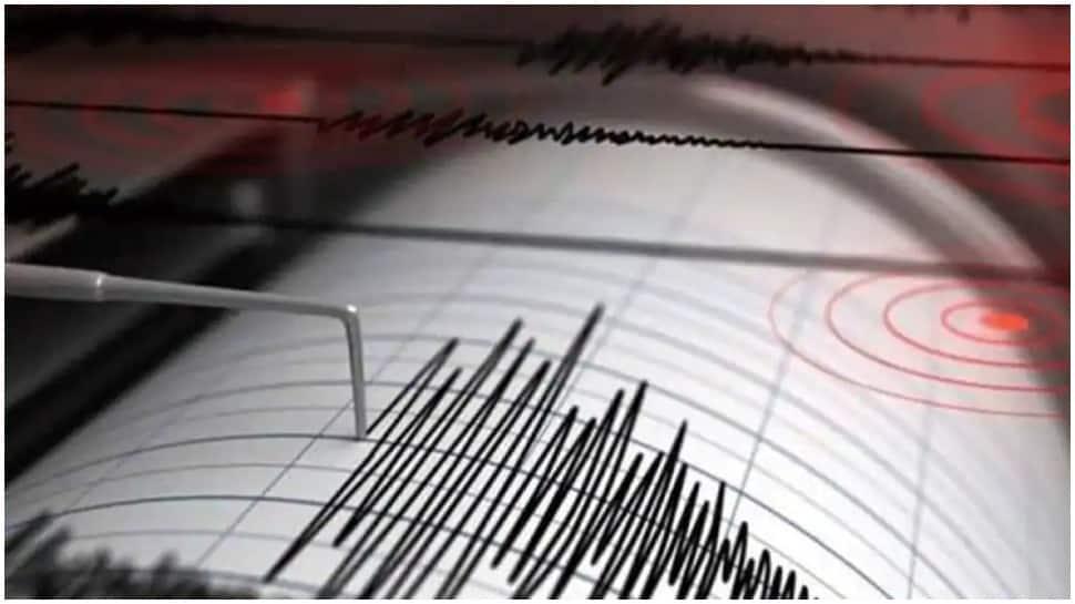 Earthquake of 4.2 magnitude jolts Gujarat's Kutch district