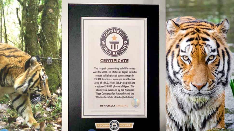 India's 2018 tiger census sets new Guinness Record as largest camera-trap wildlife survey