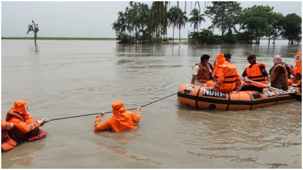 Assam floods: NDRF rescues 85 villagers, 20 livestock in Barpeta; 2,600 rescued so far