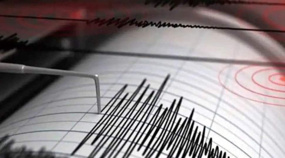Medium-intensity earthquake of 4.4 magnitude hits 435-km north-northwest of Kargil