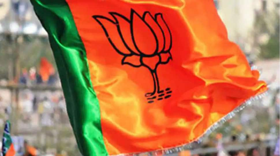 Over 30 BJP workers injured after helium balloons explode during PM Narendra Modi's birthday celebrations in Chennai
