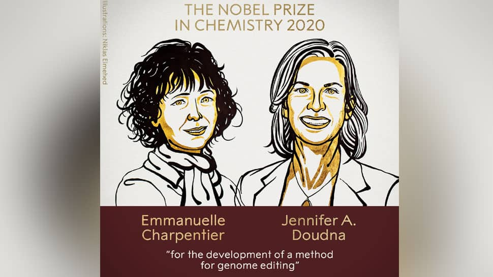 2020 Nobel Prize in Chemistry jointly awarded to scientists Emmanuelle  Charpentier and Jennifer A Doudna | Science News | Zee News