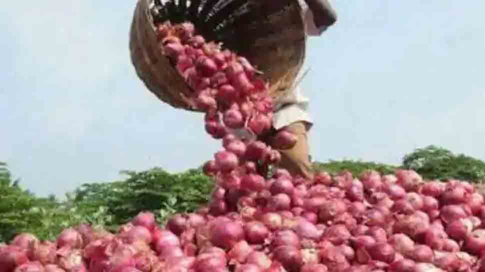 Onion prices to touch new high during Diwali — Check rates from Lasalgaon mandi