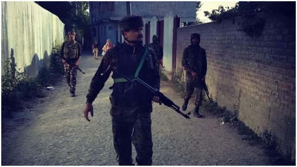 Two Jaish-e-Mohammad terrorists killed in encounter in J&K's Budgam