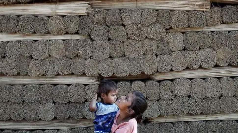 Modi govt's big push for jute industry! 100% food grains, 20% sugar to be mandatorily packaged in jute bags