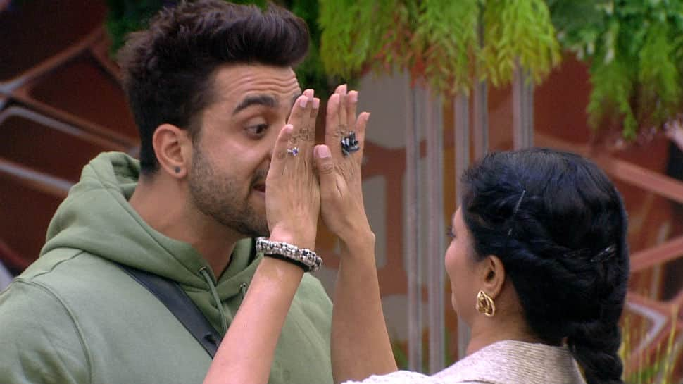 Bigg Boss 14, Written Update: Kavita Kaushik and Aly Goni get into heated argument over house rules