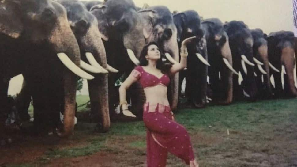 Preity Zinta shares her favourite photo from 'Dil Se' shoot, wonders what the elephants were thinking