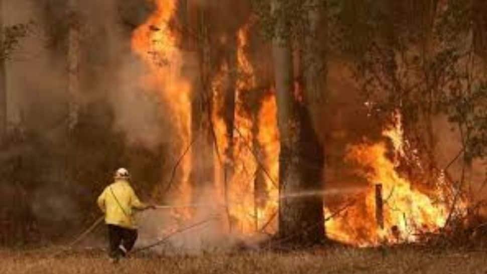 Raging Australian bushfire destroys dozens of homes   World News