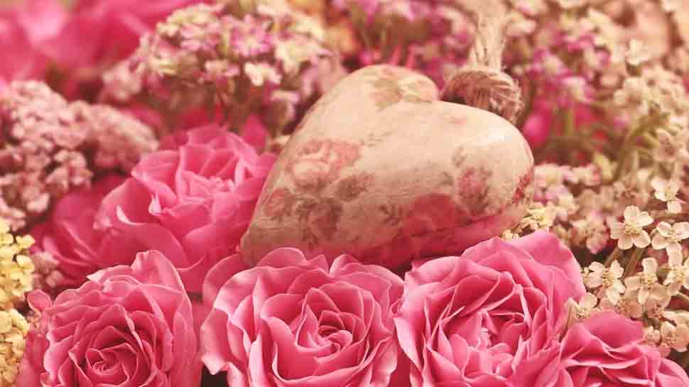 Happy Rose Day 2021: Quotes, messages to send to your loved ones