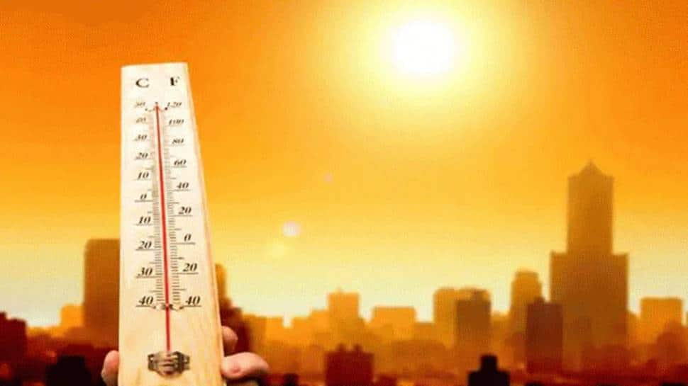 Delhi records second highest mean max temperature for February in last 120 years thumbnail