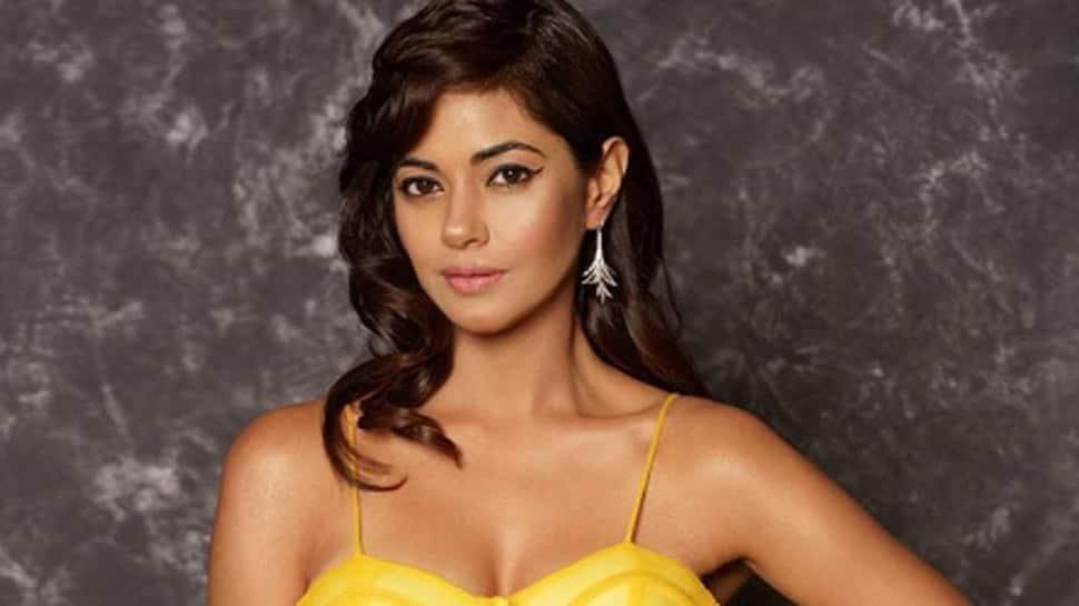 """Not Got Any Work Because Of Priyanka,"" Says Cousin Meera Chopra"