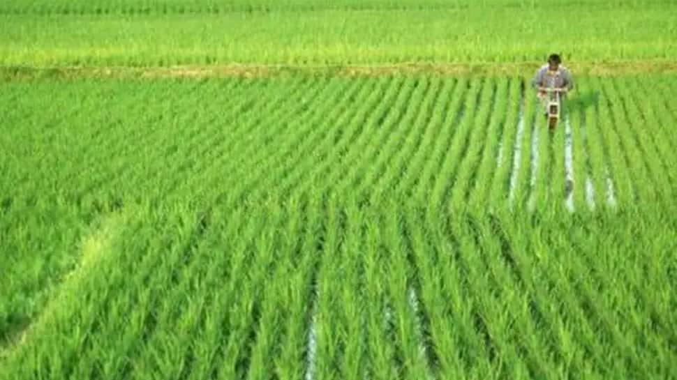 PM Kisan Yojana: Farmers can receive Rs 36,000 annually, here's how
