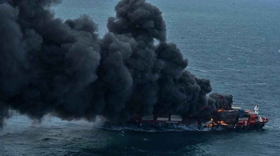 Sri Lanka: Dead marine life washes ashore as X-Press Pearl container ship burns