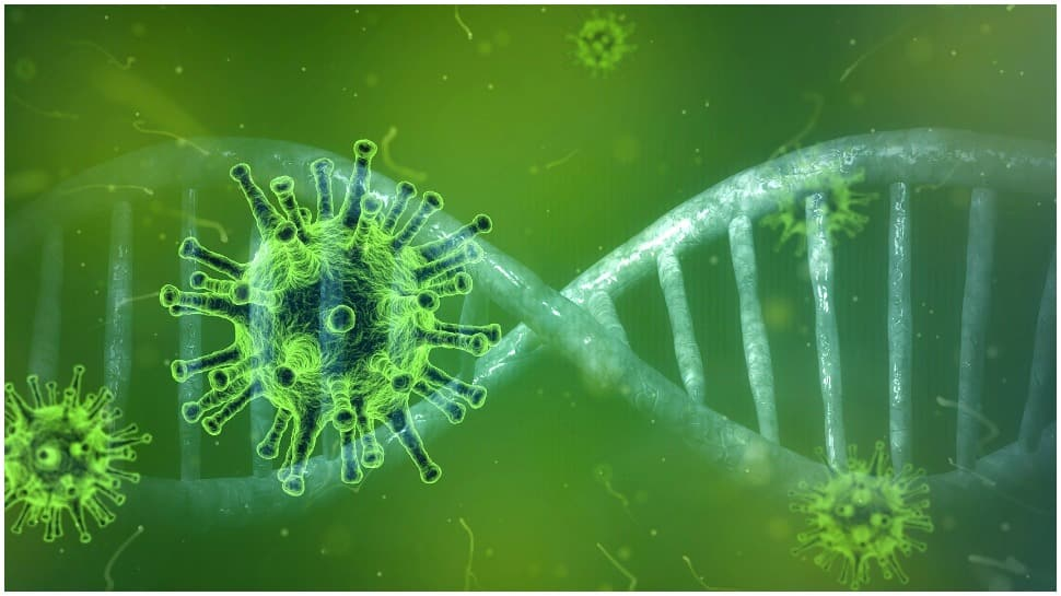 COVID-19 origin: 60 percent of Americans believe in Wuhan lab leak theory