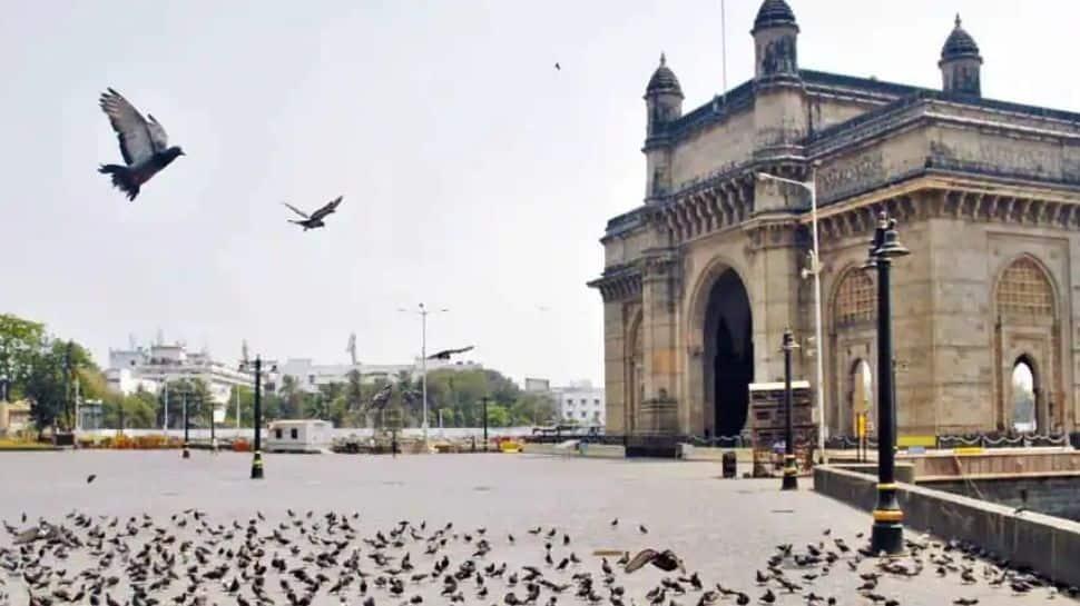 No dengue fatalities so far in Mumbai this year