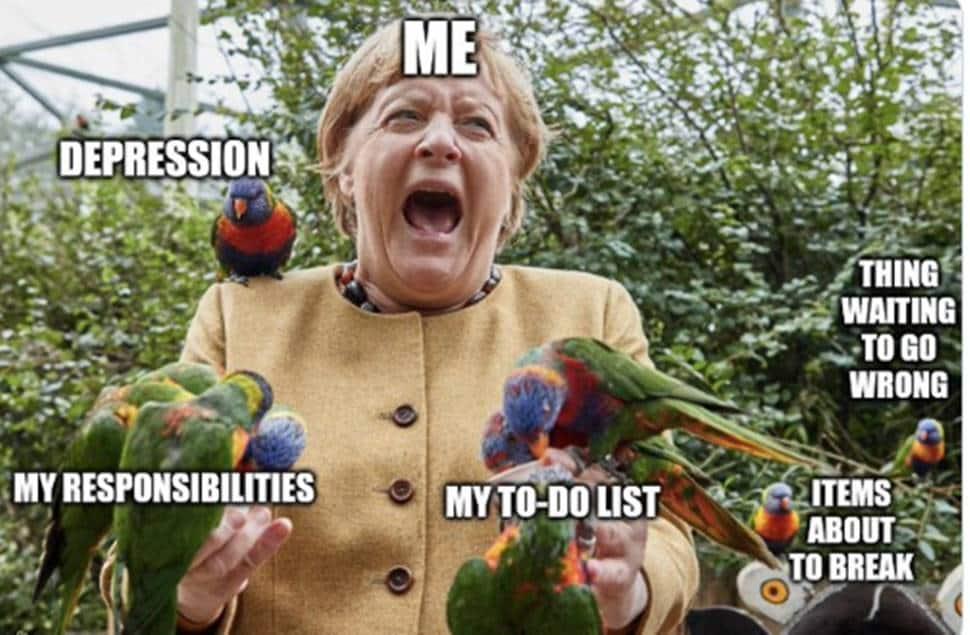 Angela Merkel's bird picture used as meme