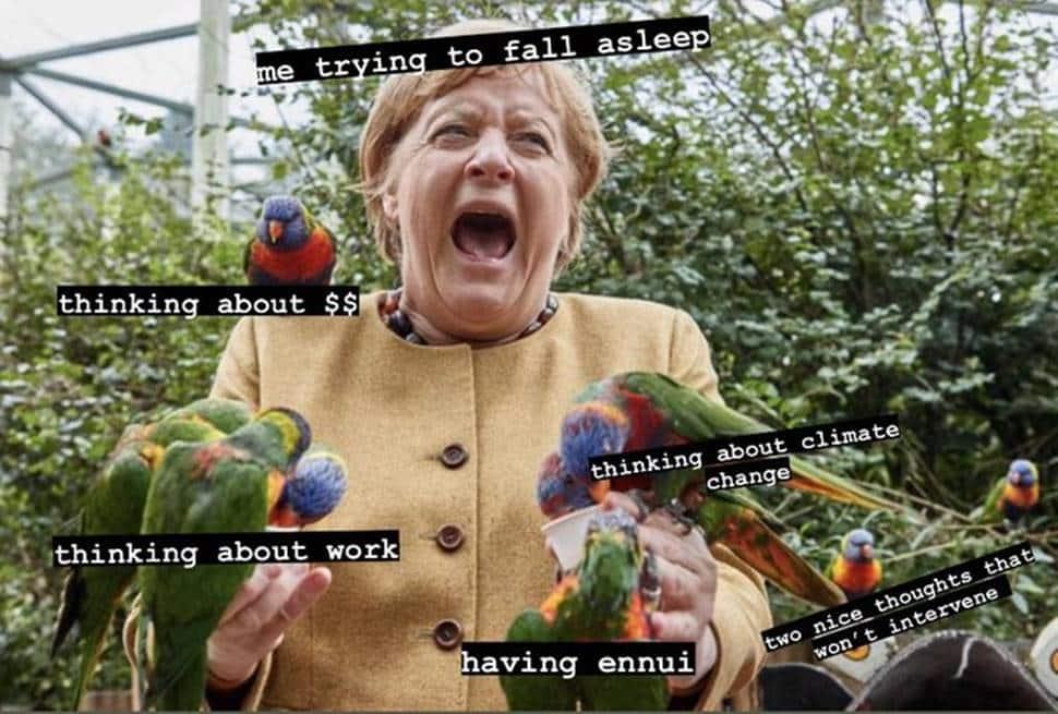 Angela Merkel's bird picture becomes popular meme