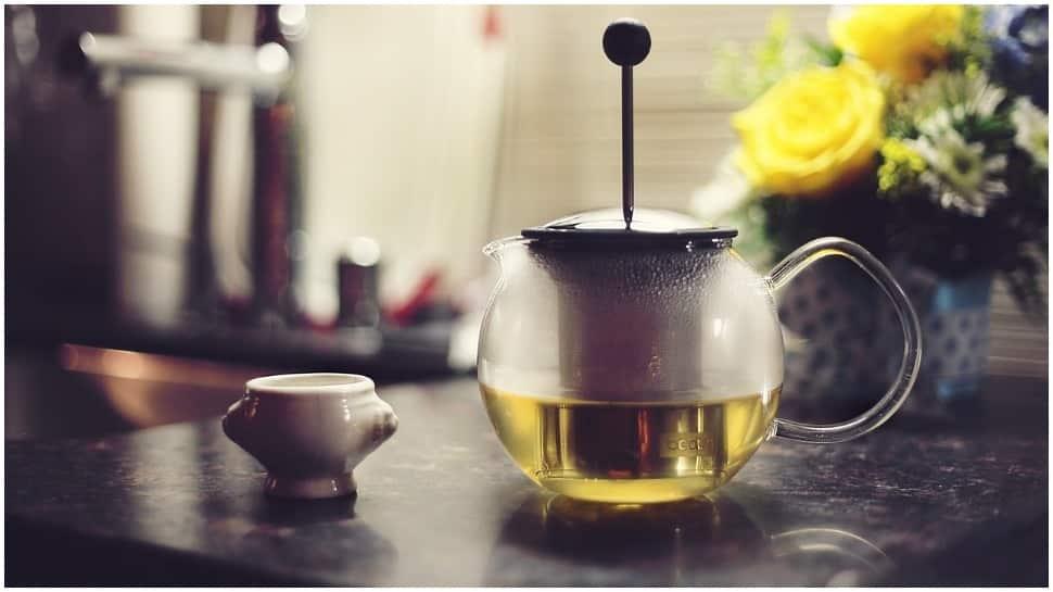 Green tea compounds can treat Covid, diabetes, ageing: IISER Bhopal thumbnail