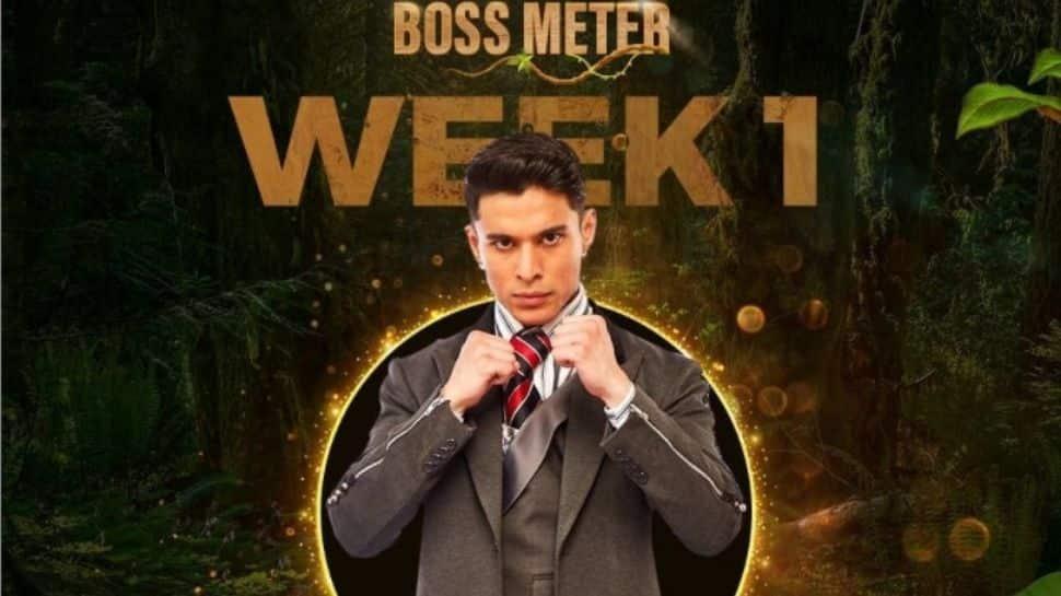 Exclusive: I went to Bigg Boss OTT just to get entry in Bigg Boss 15, says Pratik Sehajpal