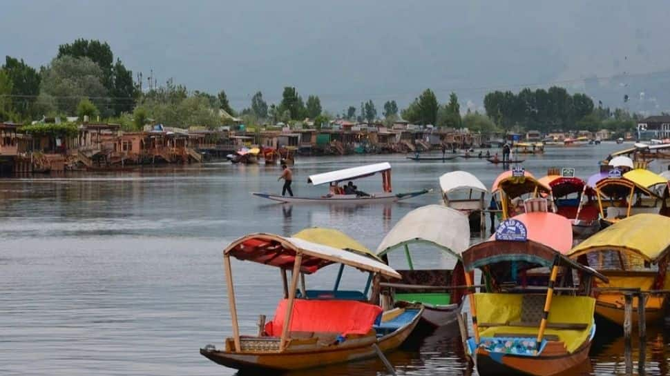 'Pakistan has never apologised for human rights violation in Jammu & Kashmir' thumbnail