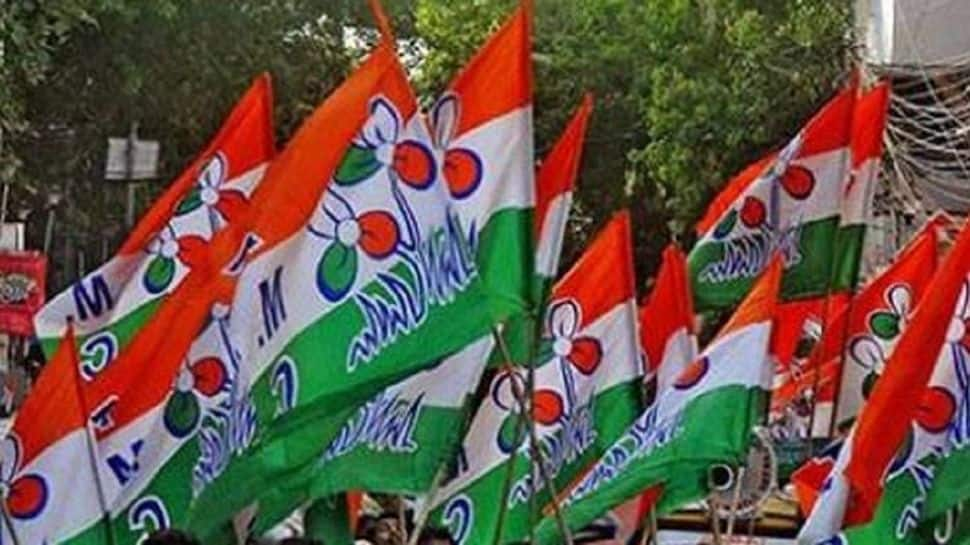 Around 300 people joined TMC in Goa ahead of 2022 assembly elections thumbnail