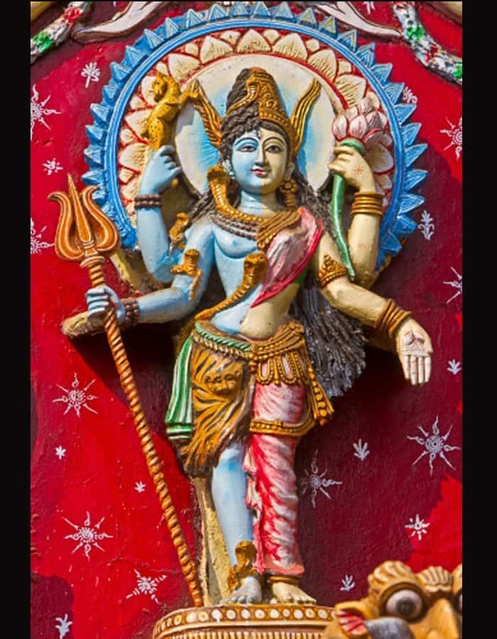Ardhanarishwara form of Lord Shiva