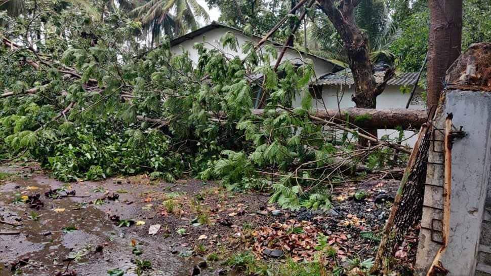 Cyclone NIsarga, IMD